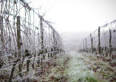 32-hiver_2
