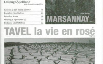 Elian Da Ros, la soif de comprendre !